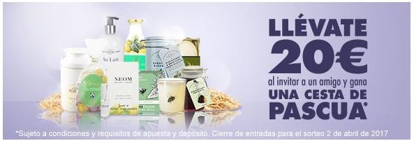 Canal Bingo promo